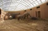 Дом слонов в Копенгагене