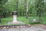 Зеленый Новосибирск
