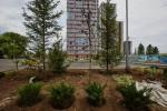 «Ясный берег» строит новые дороги для своих жителей