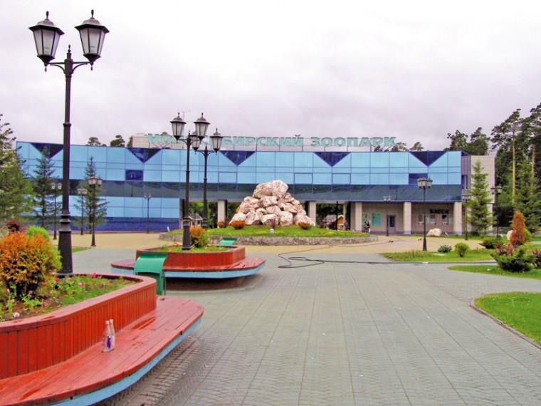 Новосибирский зоопарк: дом для 10 тысяч животных