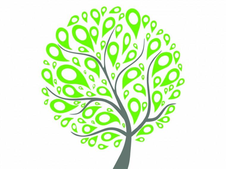 Возвращение к дереву