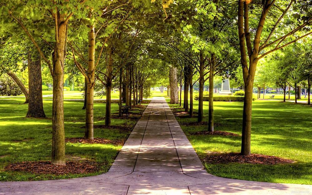 Парк в Искитиме благоустроят за 20 миллионов