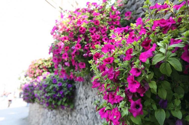 Новосибирск встречает весну