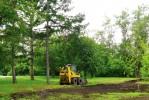 Работы по озеленению парка