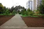 Озеленение парка