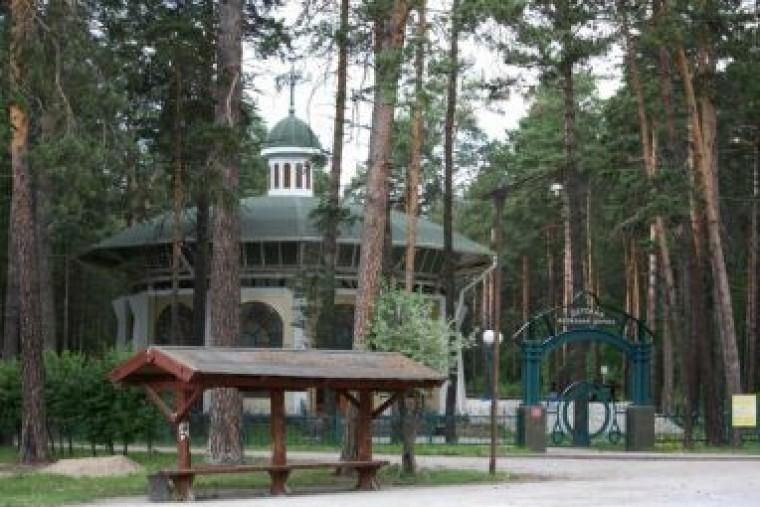 Заельцовский бор: сердце Новосибирска
