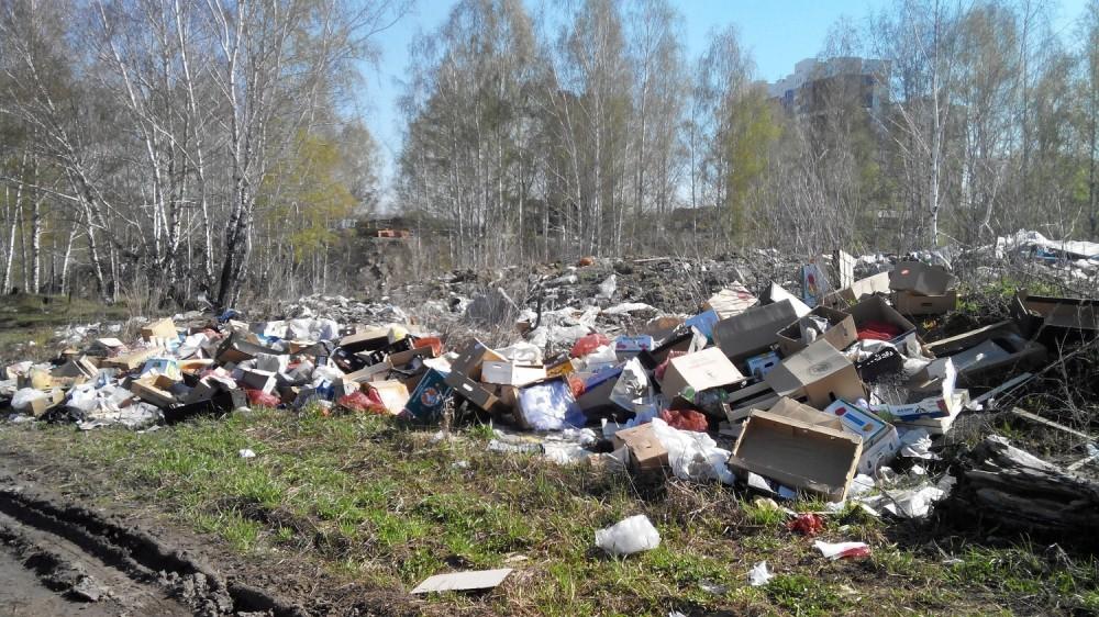 Триллионы рублей потребуются в России на ликвидацию незаконных свалок